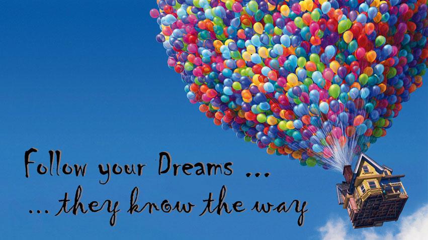 Perseguir tu sueño. Hudipro