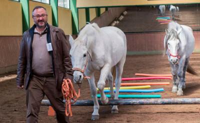 Convivencia con caballos: La gestión de emociones para las empresas